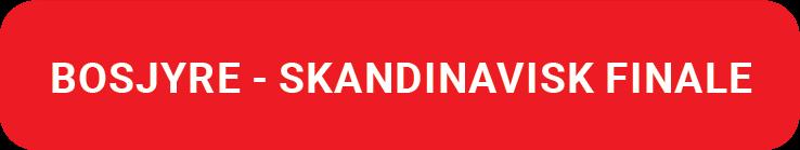 brosjyre-skandinavisk-finale